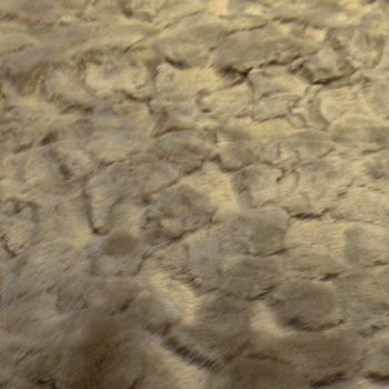 ruskea karvakangas